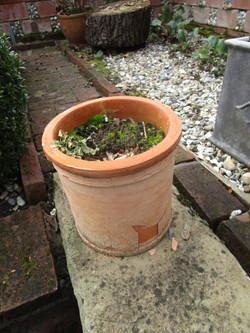 Broken pots2