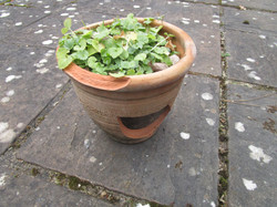 Broken pots5