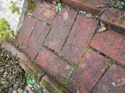 Brick path to repair4