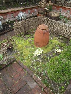 Rhubarb beds replanting1