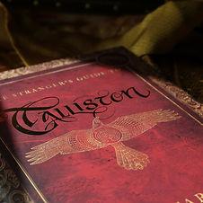 The Stranger's Guide To Talliston LE dus