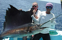 Costarica - sailfish