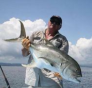 Costarica - trevally