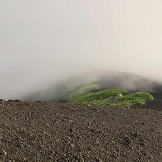 霧が凄くて立往生🌫