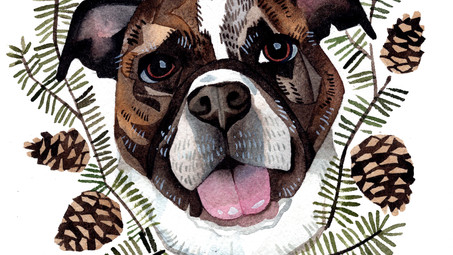 Pet Portrait Commissions Holiday 2017