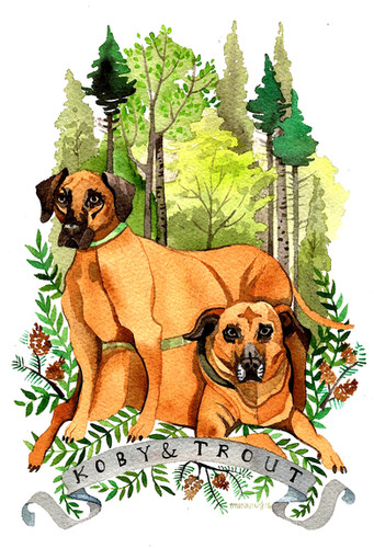 Ande's Dogs