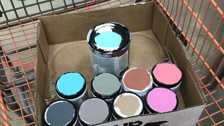 Paint Purchase Hack