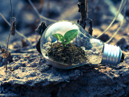Debt and Nature Convening