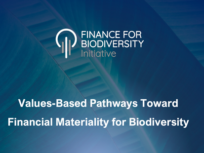 Values-Based Pathways Toward Financial Materiality for Biodiversity