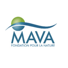 MAVA Foundation