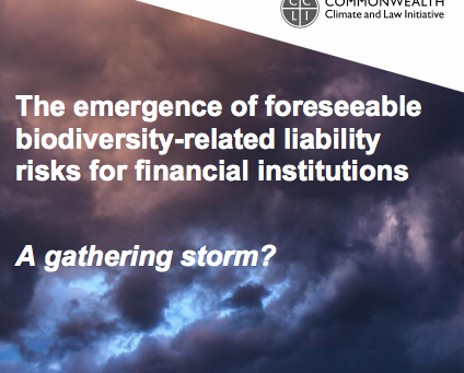 What are the biodiversity related legal liability risks for financial institutions?