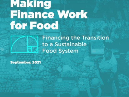 RESHAPE GLOBAL FINANCE TO SUPPORT INEVITABLE TRANSITION TO SUSTAINABLE FOOD SYSTEM
