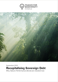 This publication sets out an approach to link the cost of sovereign debt with success in protecting or enhancing a country's valued, productive natural capital.