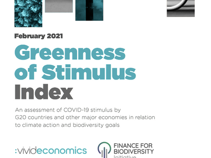 Global Covid-19 stimulus continues to damage environment – but US could catalyse greener recovery