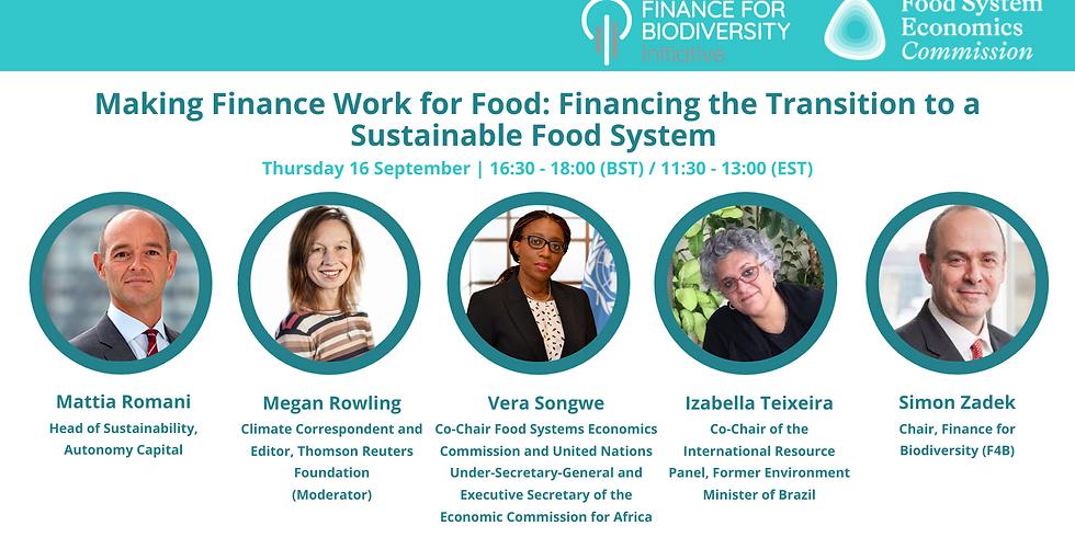 Making Finance Work For Food Webinar