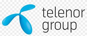 telenorgroup-logo.png