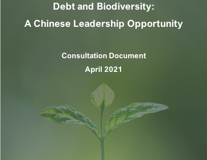 Debt and Biodiversity: A Chinese Leadership Opportunity