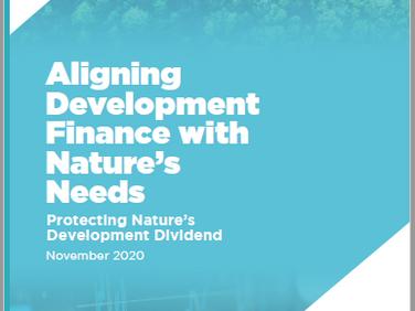 F4B Report: World's development banks endangering vulnerable ecosystems worth US$1.1 trillion/year
