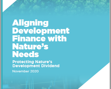 F4B Report: World's development banks endangering vulnerable ecosystems worth US$1.1 trillion/year