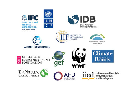 Working Group on Debt for Nature