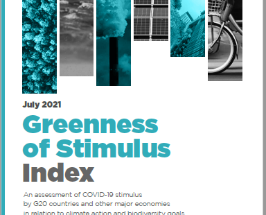 """Majority of $17.2 Trillion Covid Stimulus Packages """"Doing More Harm Than Good"""" to Environment"""