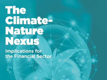 The Climate-Nature Nexus: Implications for the Financial Sector
