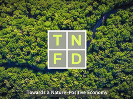 F4B congratulates TNFD on its first convening & launch of Development Finance Hub