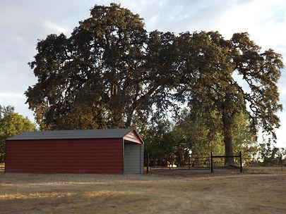 California horse retirement, retired horse boarding, Equus Farms
