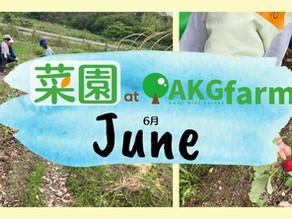 June at AKG & AKGfarm