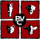 PVC - Logo - HIRES less background.JPG
