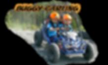 Buggy -carting nettikuva.png
