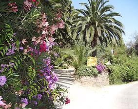 entrée jardin arboré