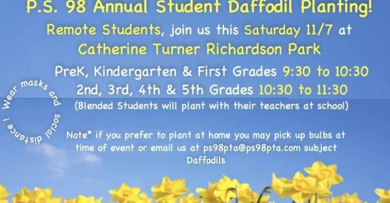 annual%20daffodil%20planting%201_edited.