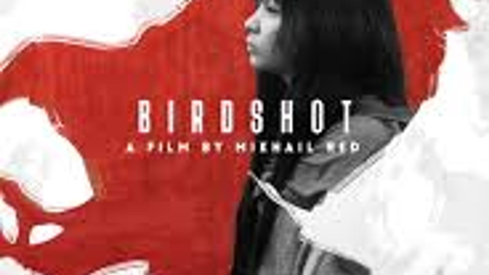 Birdshot (2016, Mikhail Red)