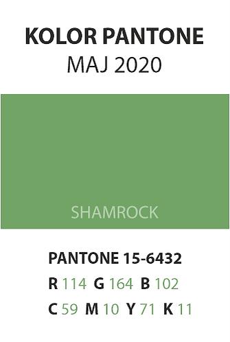 05_pantone.png