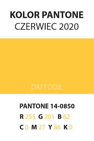06_pantone.png