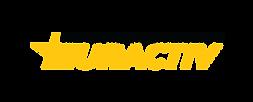 Network logo 2021 _ Transparent.png