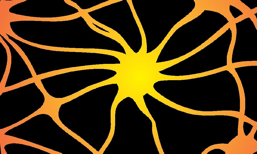 CoreSenses-neuron full-1.png