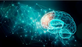 Ways to Improve Your Short and Long-Term Memory During Quarantine