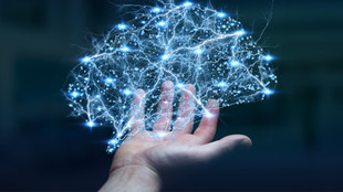 What Is Cognitive Training and Why Is It So Important to Invest in?