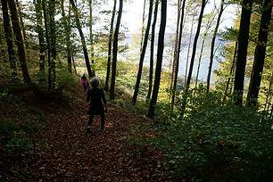 HÖRI & SCHIENERBERG • Bodensee
