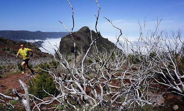 Trailrunning-Madeira.jpg