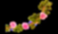 Flower 2 C_edited.png