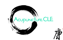 Acupunture CLE Cover
