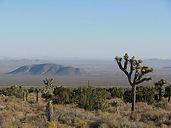 High Desert Ride