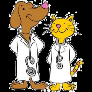pets 1st transport medical care