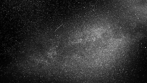 starlight-min.png