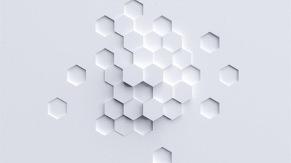 White Hexigon.jpg