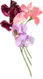 flowers_left_transparent.png