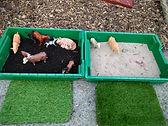 Abbey small trays.jpg